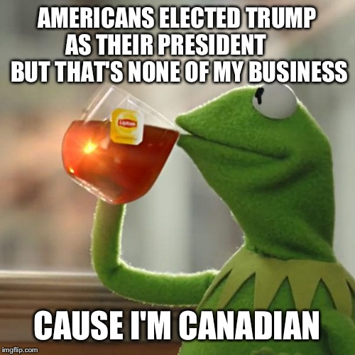 But Thats None Of My Business Meme | AMERICANS ELECTED TRUMP AS THEIR PRESIDENT       BUT THAT'S NONE OF MY BUSINESS CAUSE I'M CANADIAN | image tagged in memes,but thats none of my business,kermit the frog | made w/ Imgflip meme maker