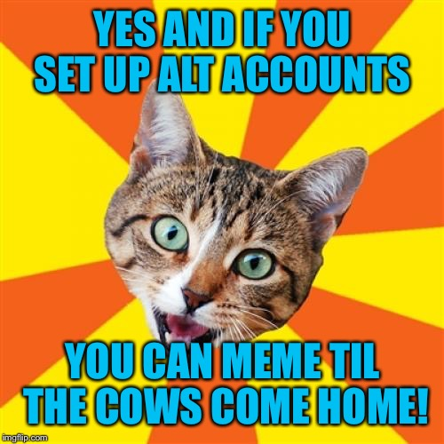 YES AND IF YOU SET UP ALT ACCOUNTS YOU CAN MEME TIL THE COWS COME HOME! | made w/ Imgflip meme maker