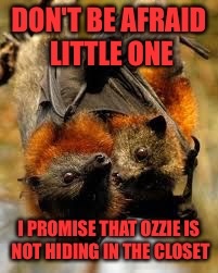 DON'T BE AFRAID LITTLE ONE I PROMISE THAT OZZIE IS NOT HIDING IN THE CLOSET | made w/ Imgflip meme maker