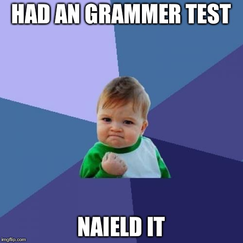 Success Kid Meme | HAD AN GRAMMER TEST NAIELD IT | image tagged in memes,success kid | made w/ Imgflip meme maker