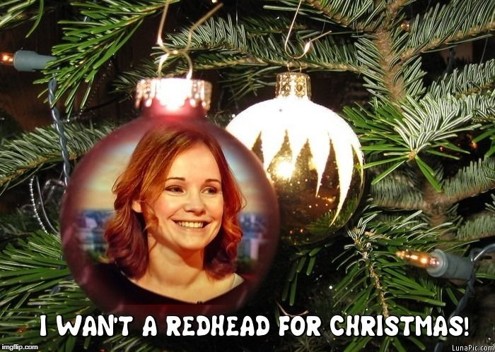I wan't a Redhead for Christmas! | image tagged in christmas | made w/ Imgflip meme maker