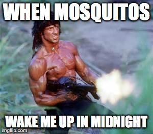What makes me crazy #1 | WHEN MOSQUITOS WAKE ME UP IN MIDNIGHT | image tagged in rambo,funny,funny memes,angry,memes | made w/ Imgflip meme maker