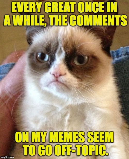 Grumpy Cat Meme | EVERY GREAT ONCE IN A WHILE, THE COMMENTS ON MY MEMES SEEM TO GO OFF-TOPIC. | image tagged in memes,grumpy cat,comments | made w/ Imgflip meme maker
