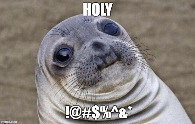 Awkward Moment Sealion Meme | HOLY !@#$%^&* | image tagged in memes,awkward moment sealion | made w/ Imgflip meme maker
