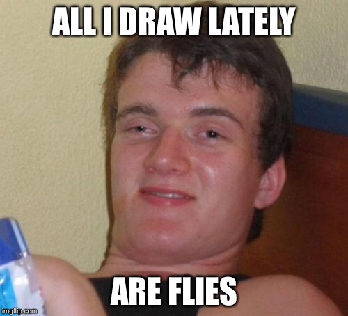 10 Guy Meme | ALL I DRAW LATELY ARE FLIES | image tagged in memes,10 guy | made w/ Imgflip meme maker