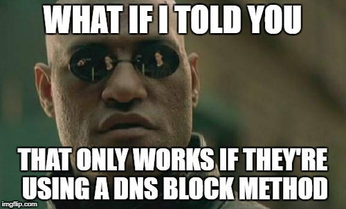 Matrix Morpheus Meme | WHAT IF I TOLD YOU THAT ONLY WORKS IF THEY'RE USING A DNS BLOCK METHOD | image tagged in memes,matrix morpheus | made w/ Imgflip meme maker