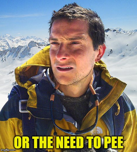 OR THE NEED TO PEE | made w/ Imgflip meme maker
