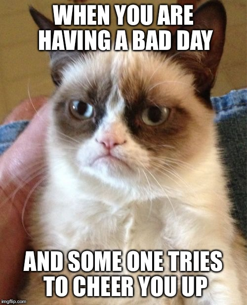 Grumpy Cat Meme | WHEN YOU ARE HAVING A BAD DAY AND SOME ONE TRIES TO CHEER YOU UP | image tagged in memes,grumpy cat | made w/ Imgflip meme maker