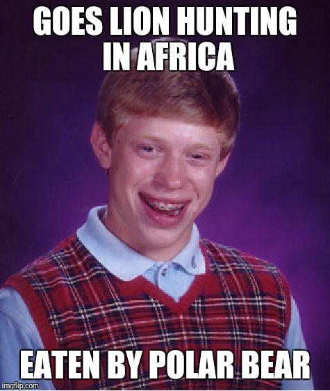 Bad Luck Brian Meme | GOES LION HUNTING IN AFRICA EATEN BY POLAR BEAR | image tagged in memes,bad luck brian | made w/ Imgflip meme maker