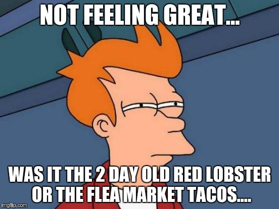 Futurama Fry Meme | NOT FEELING GREAT... WAS IT THE 2 DAY OLD RED LOBSTER OR THE FLEA MARKET TACOS.... | image tagged in memes,futurama fry | made w/ Imgflip meme maker
