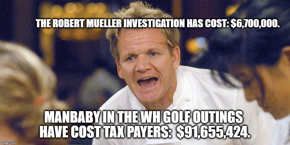 THE ROBERT MUELLER INVESTIGATION HAS COST: $6,700,000. MANBABY IN THE WH GOLF OUTINGS HAVE COST TAX PAYERS:  $91,655,424. | image tagged in gordon | made w/ Imgflip meme maker