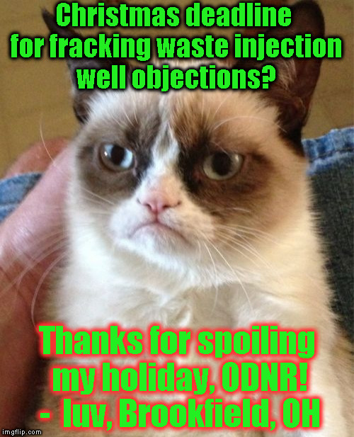 Grumpy Cat Meme | Christmas deadline for fracking waste injection well objections? Thanks for spoiling my holiday, ODNR! -  luv, Brookfield, OH | image tagged in memes,grumpy cat | made w/ Imgflip meme maker