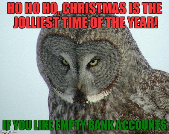 Ho ho No | HO HO HO, CHRISTMAS IS THE JOLLIEST TIME OF THE YEAR! IF YOU LIKE EMPTY BANK ACCOUNTS | image tagged in angry owl,jolly,christmas,owl,bank account,christmas shopping | made w/ Imgflip meme maker