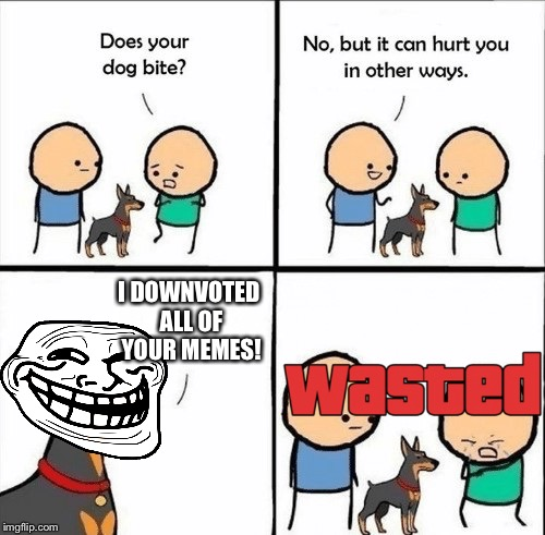Does your dog bite? | I DOWNVOTED ALL OF YOUR MEMES! | image tagged in does your dog bite,troll face,wasted,downvoting | made w/ Imgflip meme maker