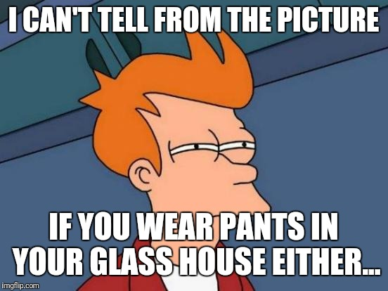 Futurama Fry Meme | I CAN'T TELL FROM THE PICTURE IF YOU WEAR PANTS IN YOUR GLASS HOUSE EITHER... | image tagged in memes,futurama fry | made w/ Imgflip meme maker
