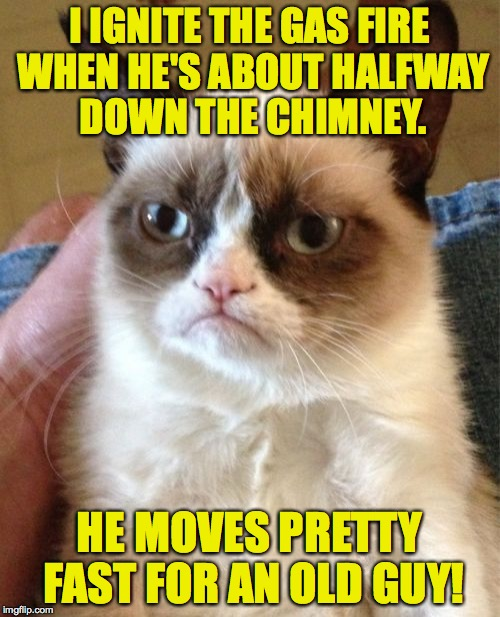 Grumpy Cat Meme | I IGNITE THE GAS FIRE WHEN HE'S ABOUT HALFWAY DOWN THE CHIMNEY. HE MOVES PRETTY FAST FOR AN OLD GUY! | image tagged in memes,grumpy cat | made w/ Imgflip meme maker