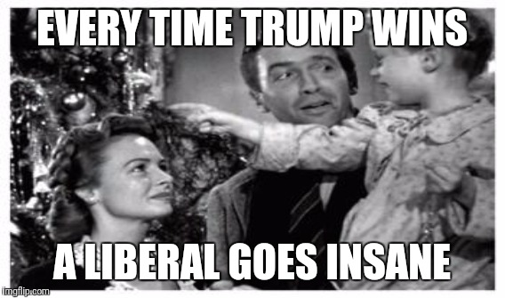 EVERY TIME TRUMP WINS A LIBERAL GOES INSANE | image tagged in donald trump,make america great again | made w/ Imgflip meme maker