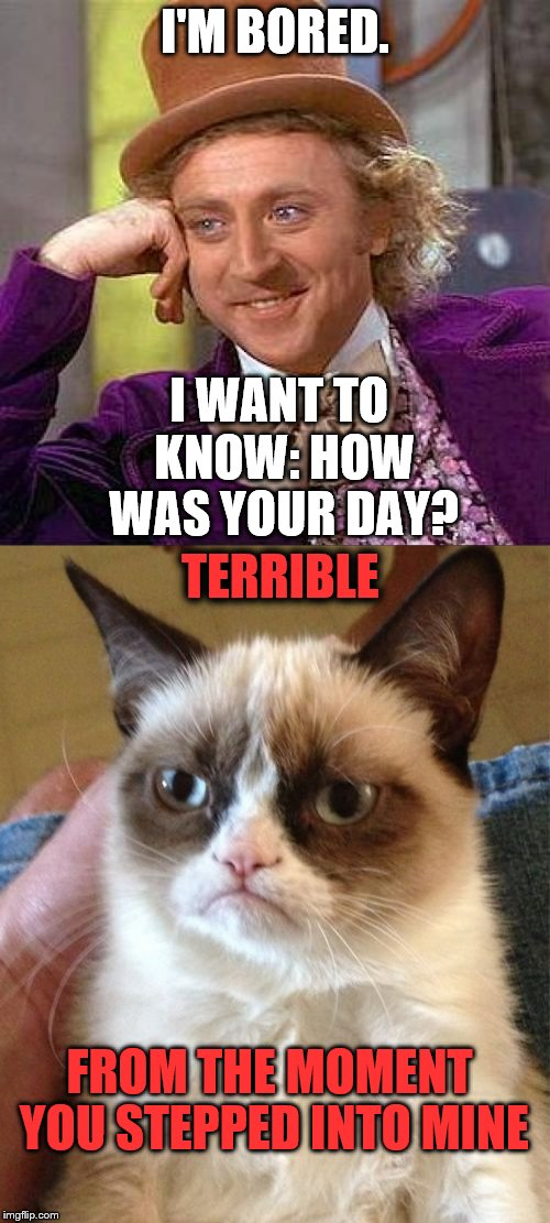 Curiosity Kills the One who Approaches the Cat | I'M BORED. I WANT TO KNOW: HOW WAS YOUR DAY? TERRIBLE FROM THE MOMENT YOU STEPPED INTO MINE | image tagged in grumpy cat | made w/ Imgflip meme maker