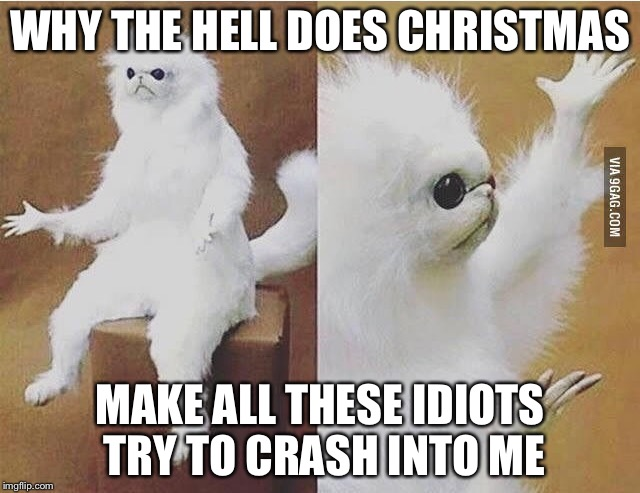 Confused white monkey |  WHY THE HELL DOES CHRISTMAS; MAKE ALL THESE IDIOTS TRY TO CRASH INTO ME | image tagged in confused white monkey | made w/ Imgflip meme maker