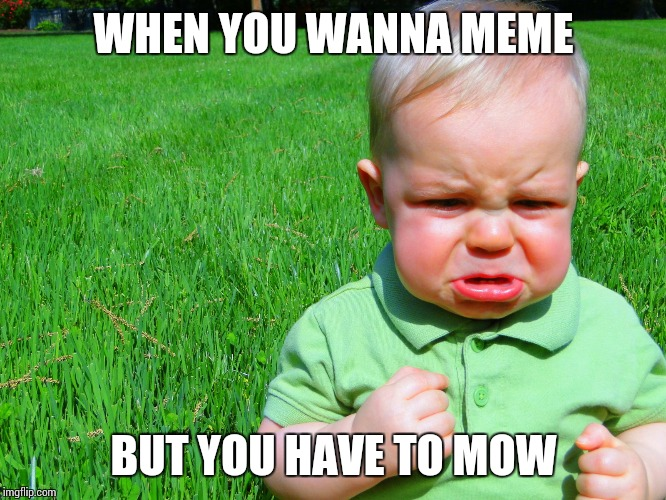 toddler pouting | WHEN YOU WANNA MEME BUT YOU HAVE TO MOW | image tagged in toddler pouting | made w/ Imgflip meme maker