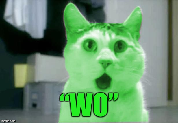 "OMG RayCat | ""WO"" 