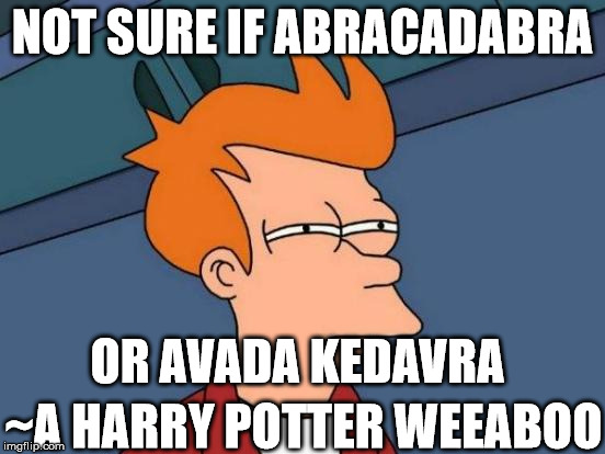 Futurama Fry Meme | NOT SURE IF ABRACADABRA OR AVADA KEDAVRA ~A HARRY POTTER WEEABOO | image tagged in memes,futurama fry | made w/ Imgflip meme maker