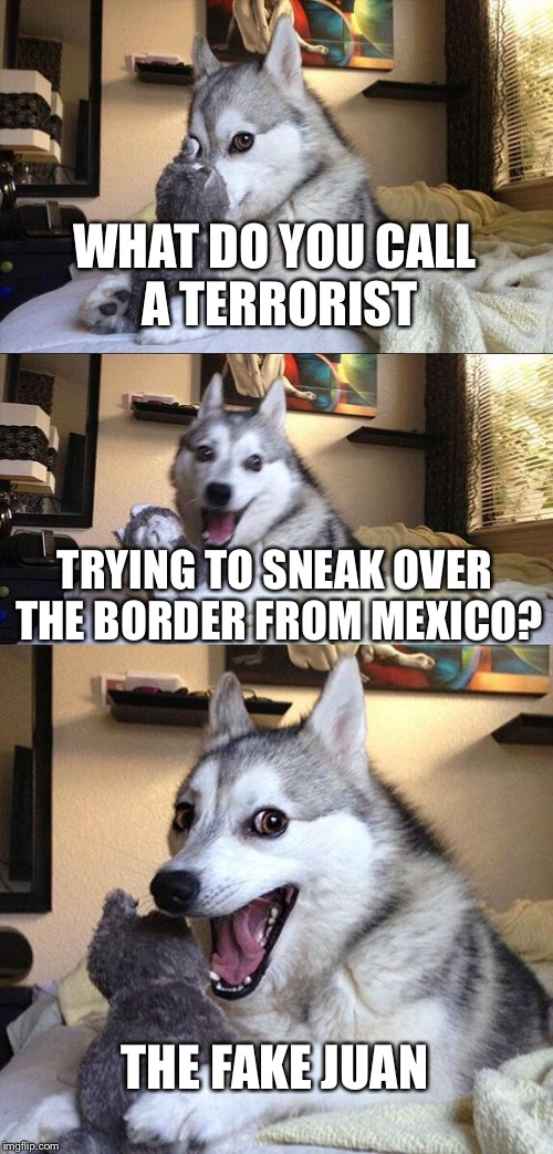 Bad Pun Dog Meme | WHAT DO YOU CALL A TERRORIST TRYING TO SNEAK OVER THE BORDER FROM MEXICO? THE FAKE JUAN | image tagged in memes,bad pun dog,funny | made w/ Imgflip meme maker
