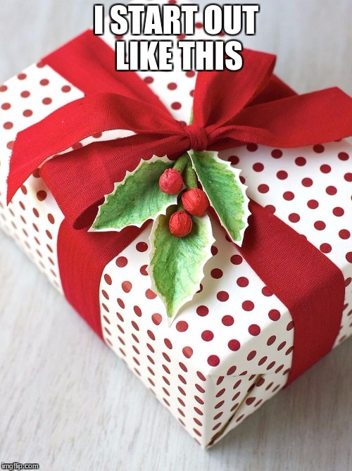 I START OUT LIKE THIS | image tagged in christmas gifts | made w/ Imgflip meme maker