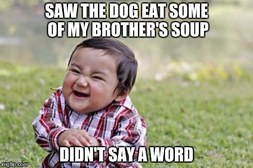 Evil Toddler Meme | SAW THE DOG EAT SOME OF MY BROTHER'S SOUP DIDN'T SAY A WORD | image tagged in memes,evil toddler | made w/ Imgflip meme maker