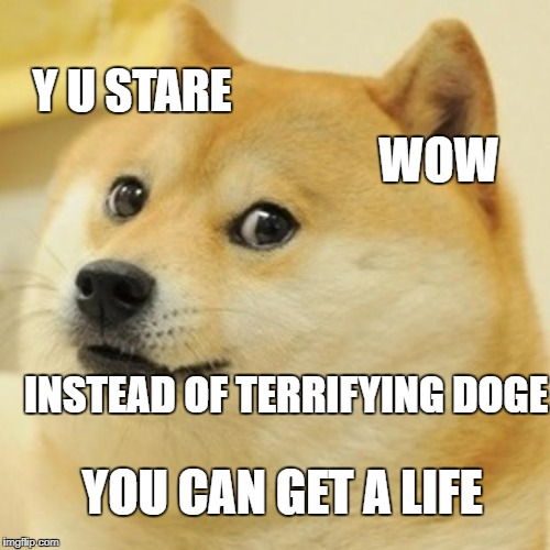 Doge Meme | WOW Y U STARE INSTEAD OF TERRIFYING DOGE YOU CAN GET A LIFE | image tagged in memes,doge | made w/ Imgflip meme maker