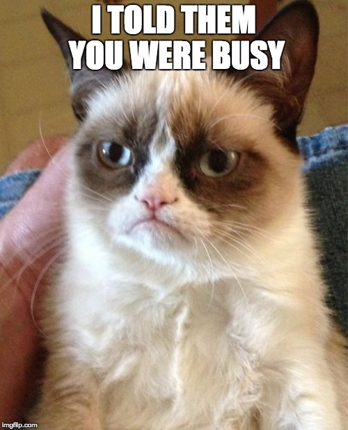 Grumpy Cat Meme | I TOLD THEM YOU WERE BUSY | image tagged in memes,grumpy cat | made w/ Imgflip meme maker