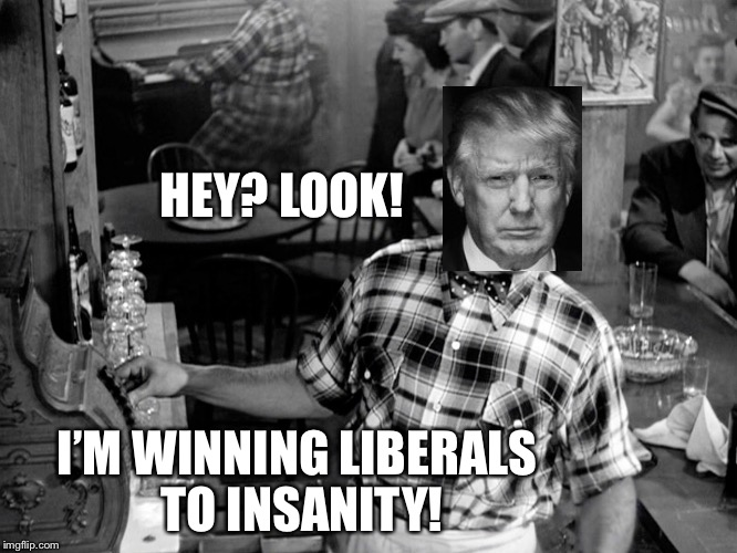 HEY? LOOK! I'M WINNING LIBERALS TO INSANITY! | made w/ Imgflip meme maker