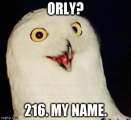 ORLY? 216. MY NAME. | image tagged in orly owl | made w/ Imgflip meme maker