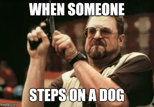 Am I The Only One Around Here Meme | WHEN SOMEONE STEPS ON A DOG | image tagged in memes,am i the only one around here | made w/ Imgflip meme maker