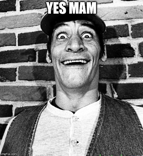 know what i mean Vern? | YES MAM | image tagged in know what i mean vern | made w/ Imgflip meme maker