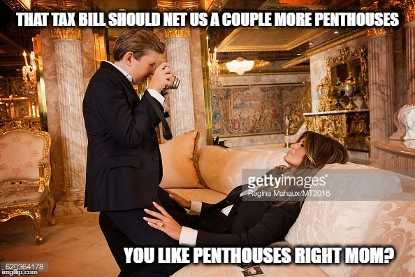 THAT TAX BILL SHOULD NET US A COUPLE MORE PENTHOUSES YOU LIKE PENTHOUSES RIGHT MOM? | image tagged in mgga | made w/ Imgflip meme maker