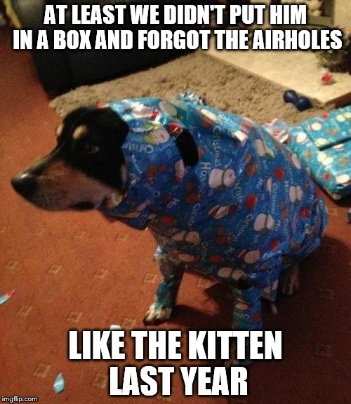 Our second try on a pet for Christmas | AT LEAST WE DIDN'T PUT HIM IN A BOX AND FORGOT THE AIRHOLES LIKE THE KITTEN LAST YEAR | image tagged in christmas,dog,pets,merry christmas,christmas presents | made w/ Imgflip meme maker