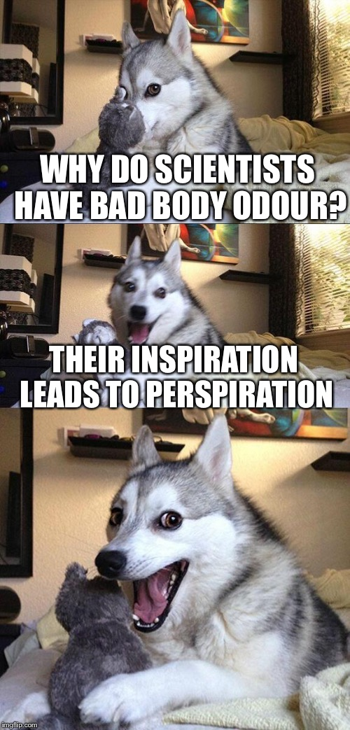Okay, wash that lab coat now! | WHY DO SCIENTISTS HAVE BAD BODY ODOUR? THEIR INSPIRATION LEADS TO PERSPIRATION | image tagged in memes,bad pun dog,science | made w/ Imgflip meme maker
