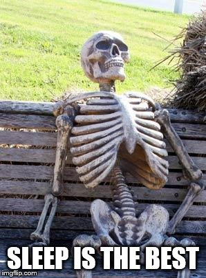 Waiting Skeleton Meme | SLEEP IS THE BEST | image tagged in memes,waiting skeleton | made w/ Imgflip meme maker