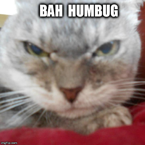 BAH  HUMBUG | image tagged in toy toy is angry | made w/ Imgflip meme maker