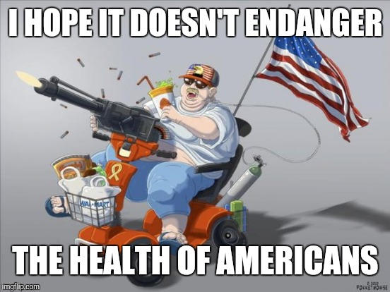 I HOPE IT DOESN'T ENDANGER THE HEALTH OF AMERICANS | made w/ Imgflip meme maker