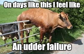 On days like this I feel like An udder failure | image tagged in fail | made w/ Imgflip meme maker