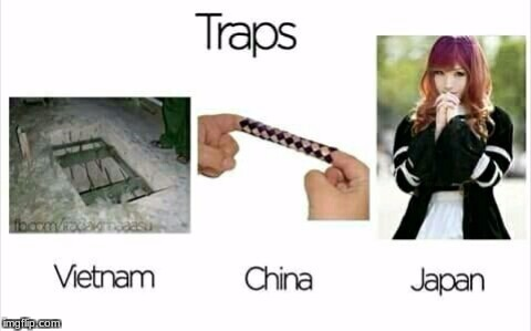 Traps in asia   | image tagged in traps,memes,china,japan,vietnam | made w/ Imgflip meme maker
