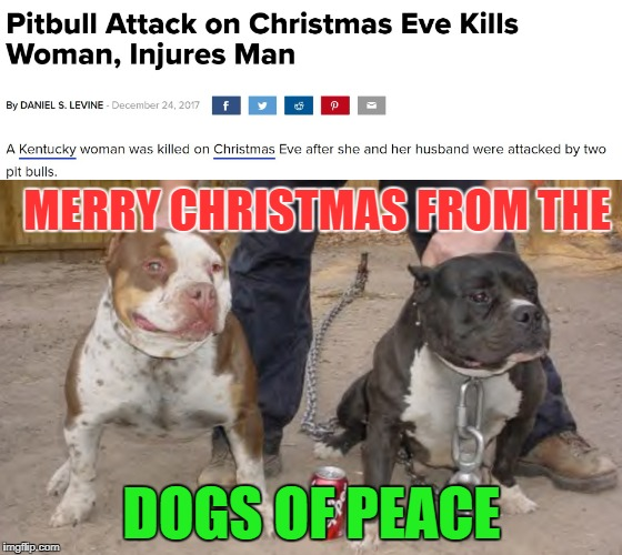 Remember, Pitbulls are good, the liberals said so.. | MERRY CHRISTMAS FROM THE DOGS OF PEACE | image tagged in pitbulls,memes,metoo,liberal logic | made w/ Imgflip meme maker