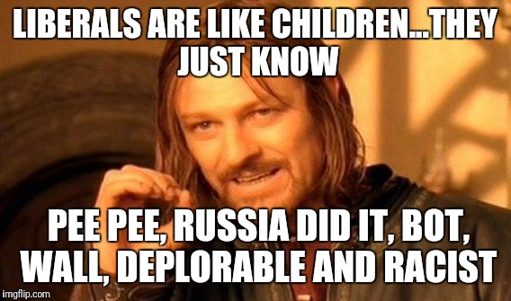 One Does Not Simply Meme | LIBERALS ARE LIKE CHILDREN...THEY JUST KNOW PEE PEE, RUSSIA DID IT, BOT, WALL, DEPLORABLE AND RACIST | image tagged in memes,one does not simply | made w/ Imgflip meme maker