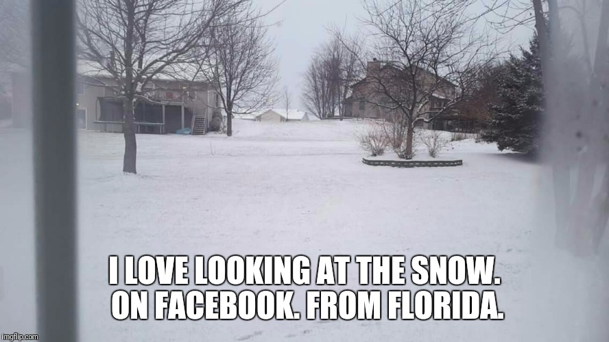 I LOVE LOOKING AT THE SNOW. ON FACEBOOK. FROM FLORIDA. | image tagged in snow | made w/ Imgflip meme maker