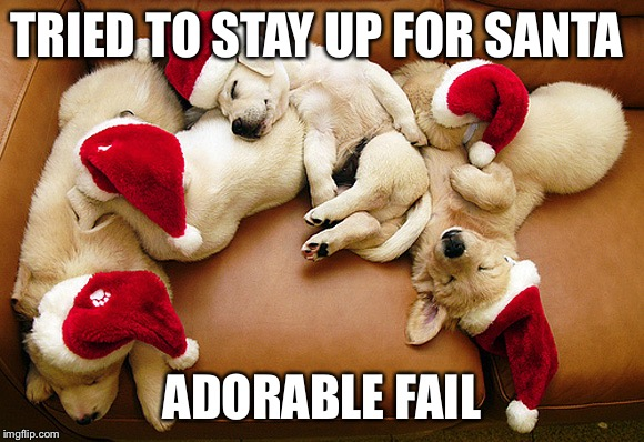 TRIED TO STAY UP FOR SANTA ADORABLE FAIL | image tagged in memes,funny memes,puppies,santa,sleep,cute animals | made w/ Imgflip meme maker