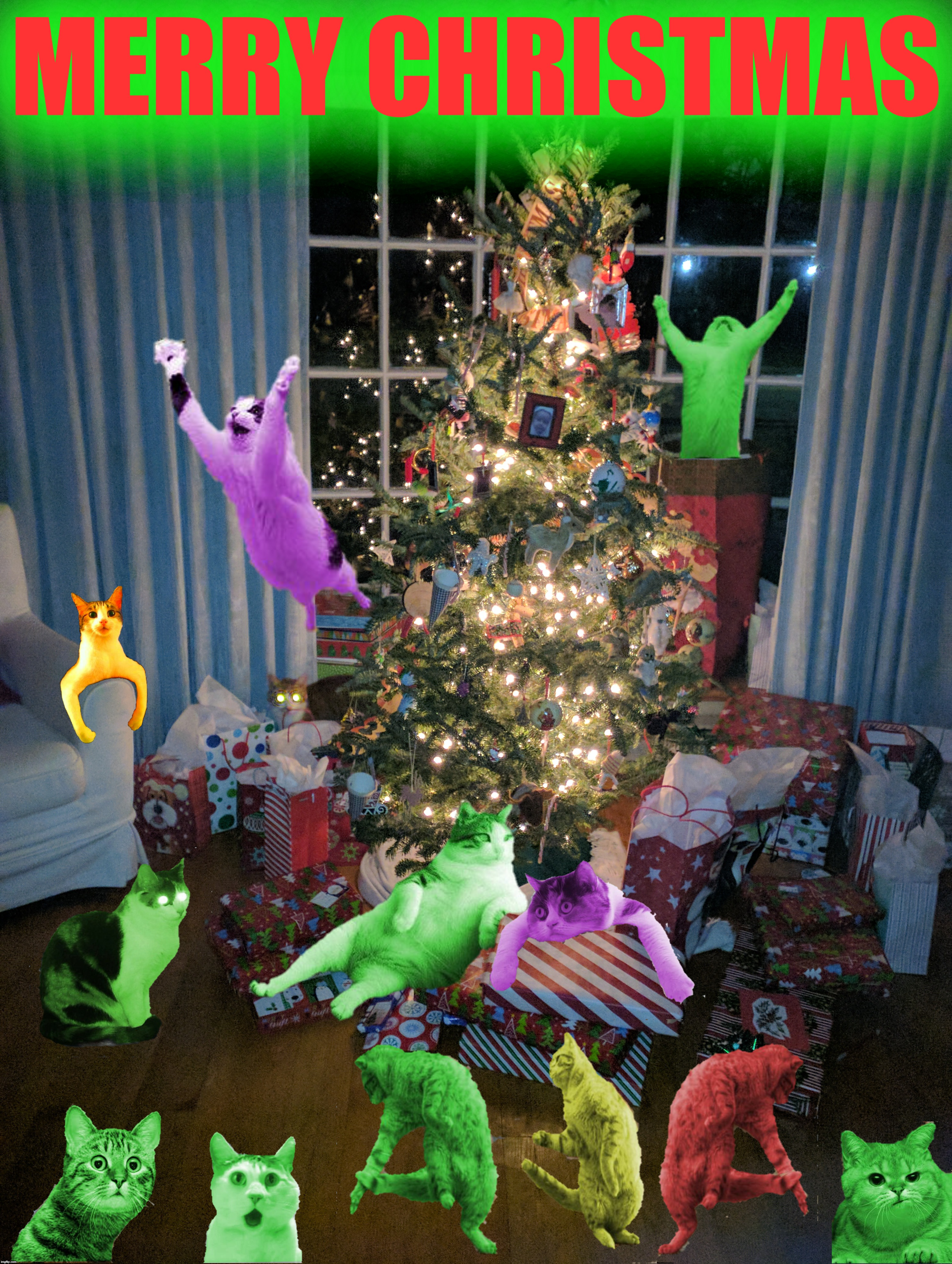 All I want for Christmas is a dozen RayCats | MERRY CHRISTMAS | image tagged in merry christmas,three dancing raycats,hypno raycat,raycat save the world,raycat is awesome,raycat christmas | made w/ Imgflip meme maker