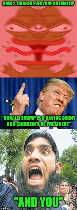 "Tis the season to be hateful... SCREW SCREW SCREW SCREW SCREW, SCREW SCREW YOU ALL | HOW 2 TRIGGER EVERYONE ON IMGFLIP ""AND YOU"" ""DONALD TRUMP IS A RAVING LOONY AND SHOULDN'T BE PRESIDENT"" 