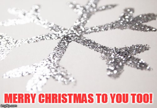 MERRY CHRISTMAS TO YOU TOO! | made w/ Imgflip meme maker